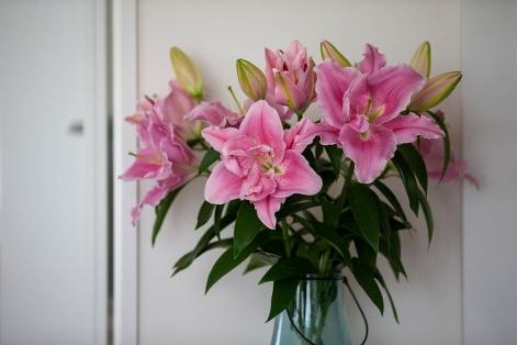 華やかな百合の花