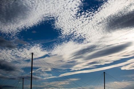 空に広がる、うろこ雲