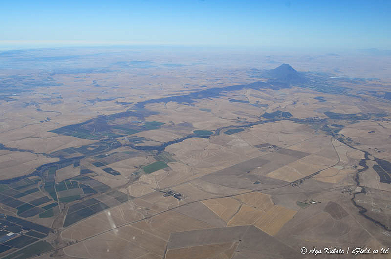 広大な畑地帯