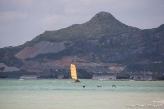 名護の海で風をつかむ練習に励む風景